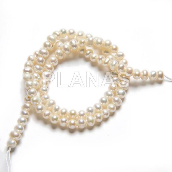 51 1 perlas cultivadas
